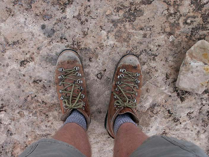 Danner Light Ii Gtx Hiking Boots - Yu Boots